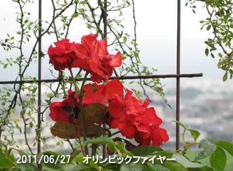 IMG_8957.jpg